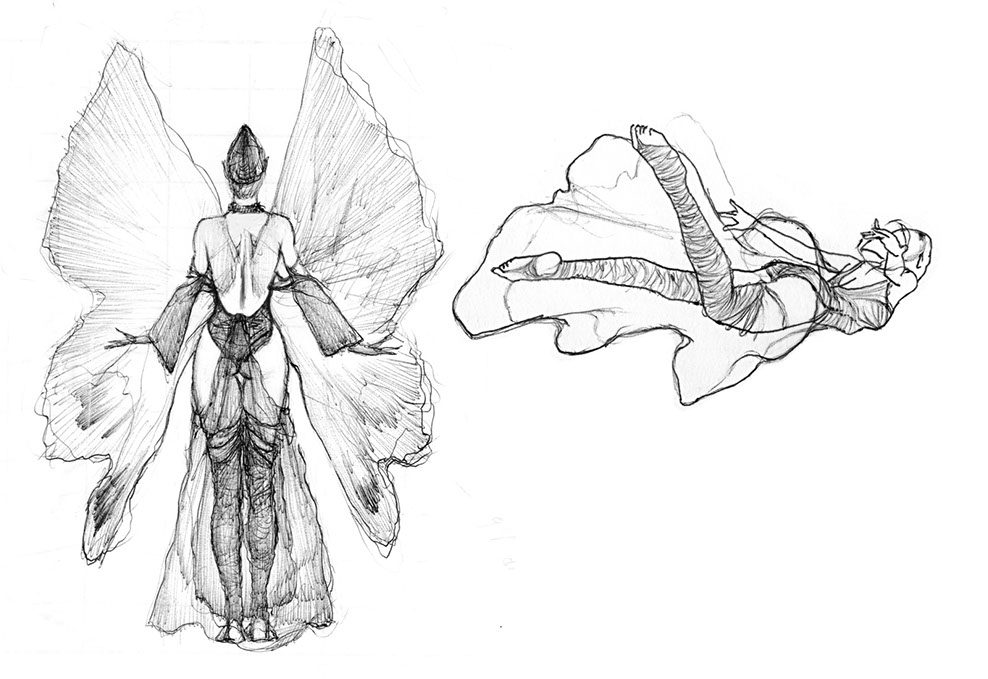 "Preparatory sketches and studies for the ""Firefly"" illustration"