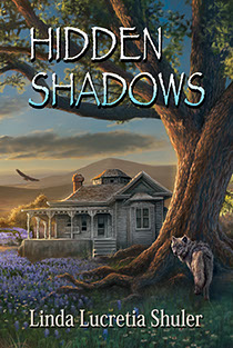 "Book cover illustration by Brad Fraunfelter for author Linda Lucretia Shuler: ""Hidden Shadows""."